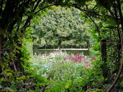 berry-cher-maisonnais-jardins-du-prieure-d-orsan-photo-pascale-desclos-1